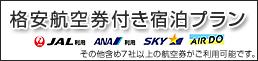 JAL/ANA 往復航空券付き格安宿泊プラン